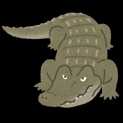 animal_crocodile_wani (1).png