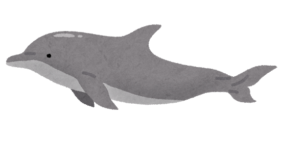 dolphin_bandouiruka.png